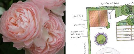blomma-illuplan